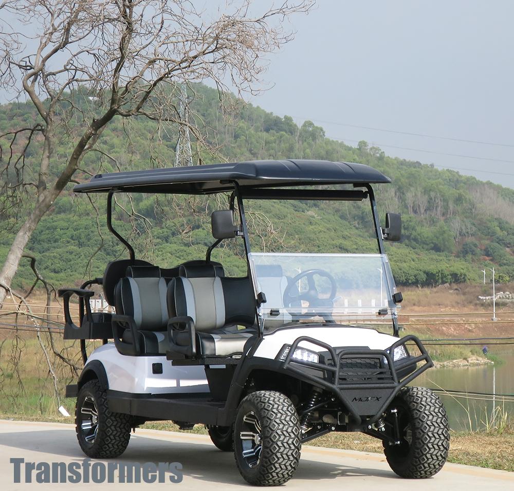 敖翔AX-V4+2白色六座电动观光车